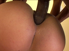 Loose ebony with long hair in glasses and bikini giving a superb blowjob before getting slammed hardcore