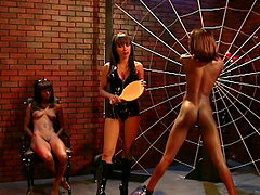 Alluring cowgirl with natural tits getting her ass spanked in femdom bdsm sex