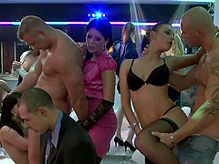 A wild Orgy With Insanely Hot Babes