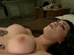 A Great Fucking Machine Scene With Holly Michaels