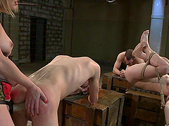 Three guys get tied up and dominated