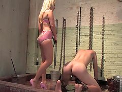Sexy Mistress Fucks Her Slave With A Strapon