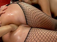Three big titty sluts stuffing their assholes!