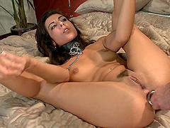 Brunette sex pet on a leash gets her asshole stuffed