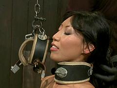 Asian whore loves bondage shit