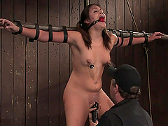 Pigtailed babe having her pussy toyed while hanging in the air in BDSM