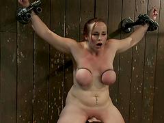 A hot big titty redhead slut in bondage scene