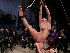 Horny blonde bombshell tied up and fucked hard!!