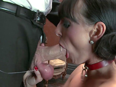 Busty brunette is fucked silly by a horny guy