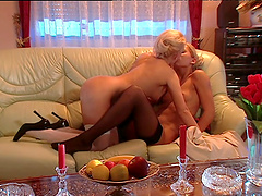Sweet babes Gina Blonde and Sylvia Sun have passionate lesbian sex